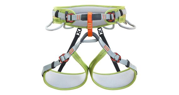 Climbing Technology Ascent Harness grey/green